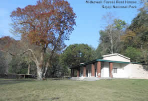 Mithawali Forest Rest House