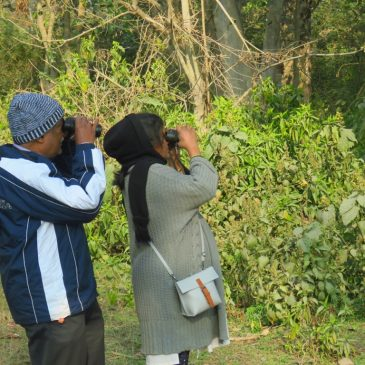 Bird Watching at Rajaji